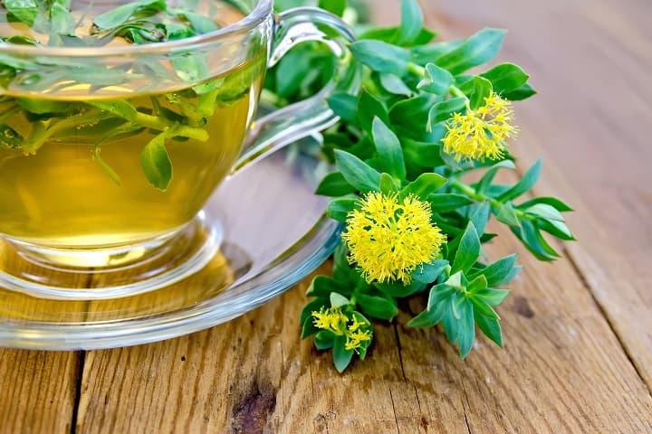 plantes pour lutter contre le stress.